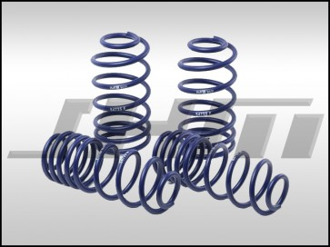 Sport Springs, Lowering Springs (H&R) for C6-S6